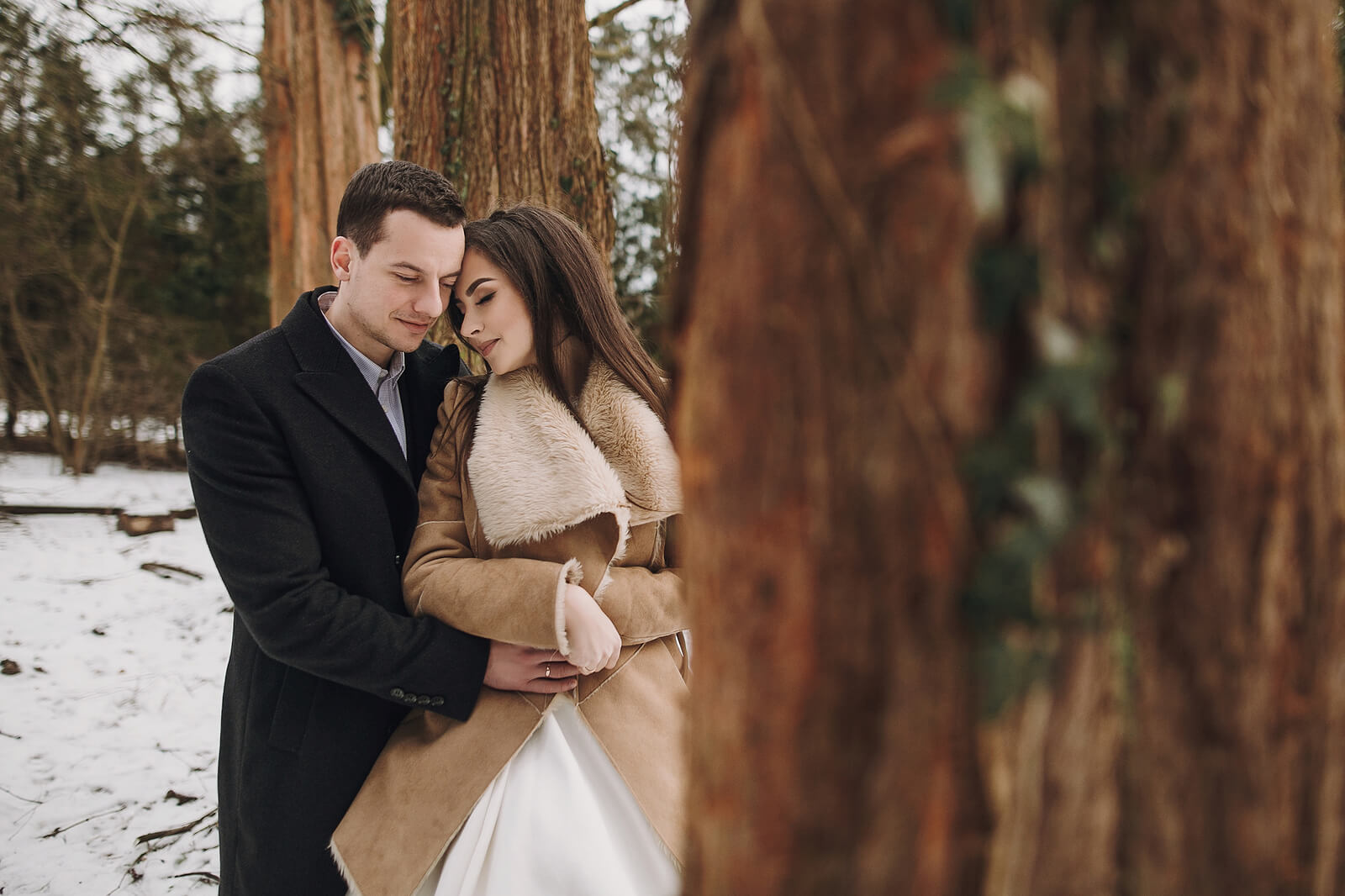 A winter wedding with the bride and groom posing amongst trees in the snow